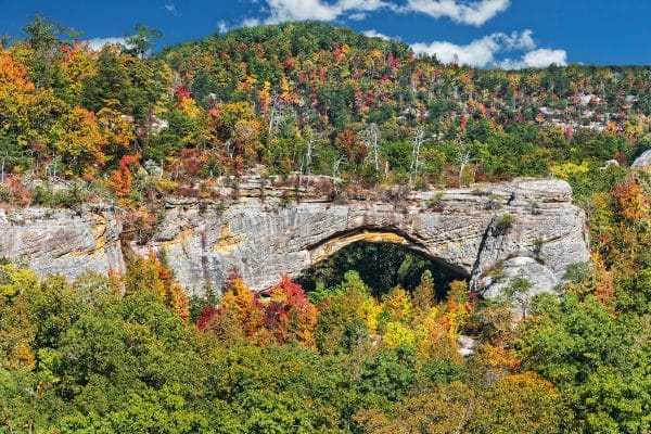 Natural Arch Scenic Area At Parkers Lake Kentucky In The Daniel Boone National Forest